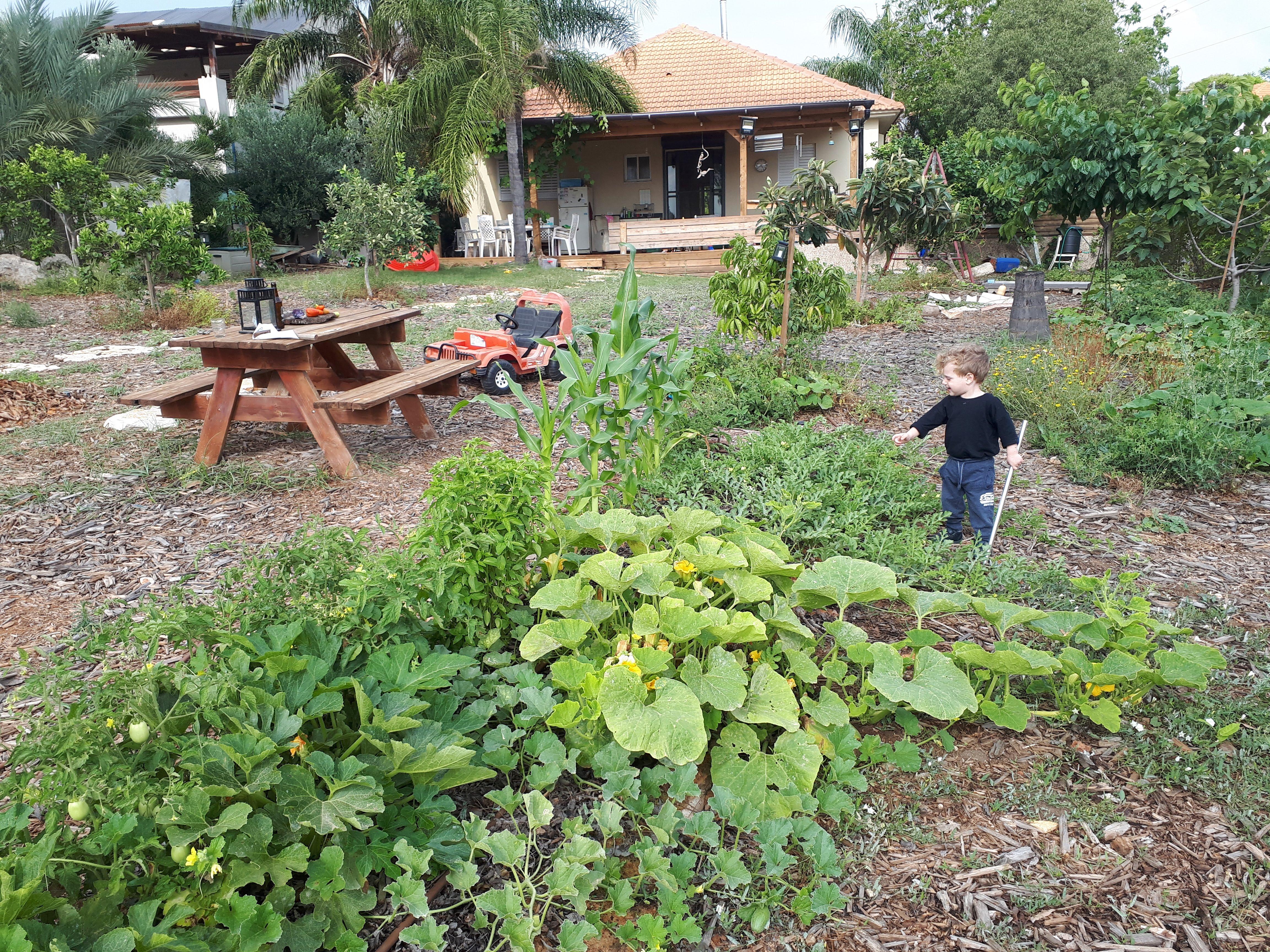 אדיר לב – בית חכם מהטבע